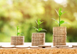 Zelené peníze
