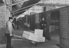 1936: Nákladové nádraží Žižkov sloužilo primárně k dopravě a uskladnění potravin. Pro překládku zboží z vlaků sloužil prostřední perón napojený na systém nákladních výtahů a lávek ke skladištím. Skladištní suterény se využívaly jako chladírny ovoce, zeleniny, másla a vajec, ale rovněž vína a likérů. A vyráběl se zde i led. Přes počáteční nedůvěru potenciálních zájemců, byla všechna skladiště do podzimu 1936 obsazena
