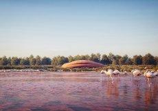 Hlavní myšlenkou je spojení stavby návštěvnického centra s přírodou rezervace na všech úrovních projektu.